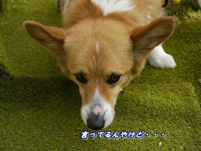 勘違い (8)