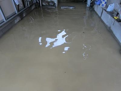 大雨 (2)