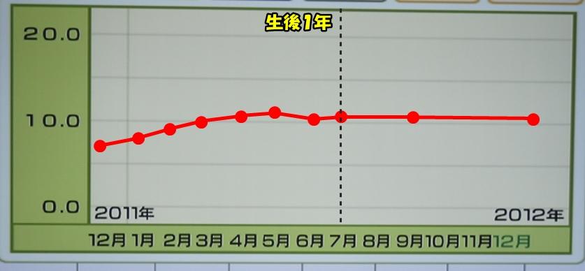 H24 12 31体重グラフ