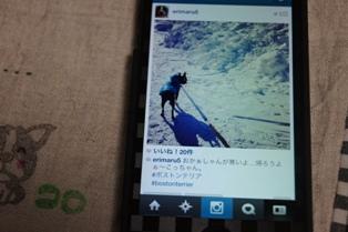 DSC02380_20130227211223.jpg