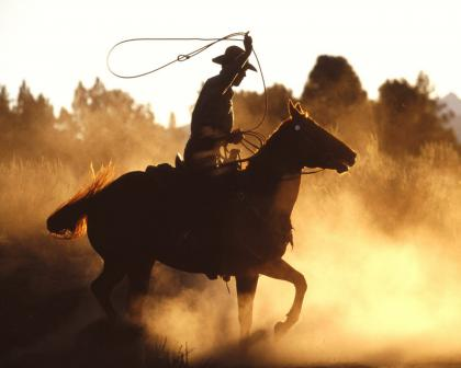 cowboy-with-lasso.jpg