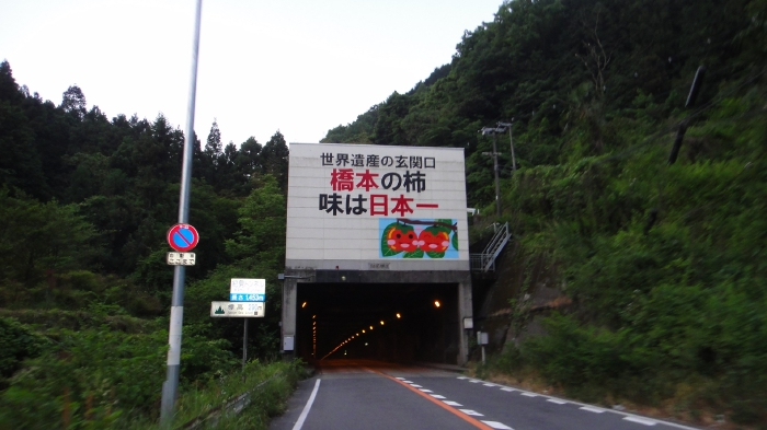 DSC04214.jpg