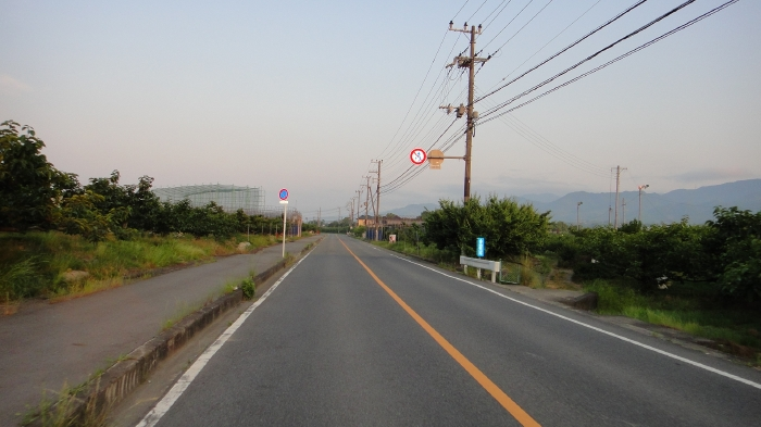 DSC04219.jpg