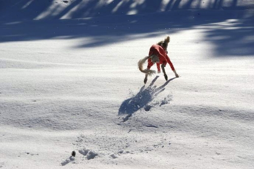 晴天続きの雪山16