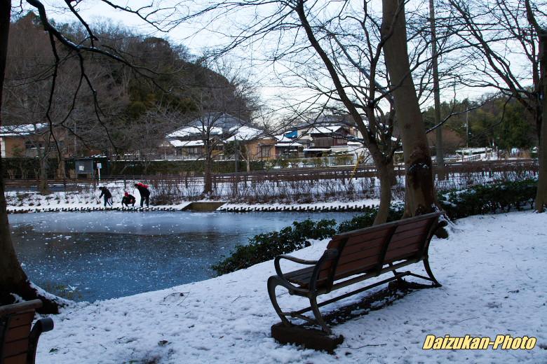 daizukan-photo-2608.jpg