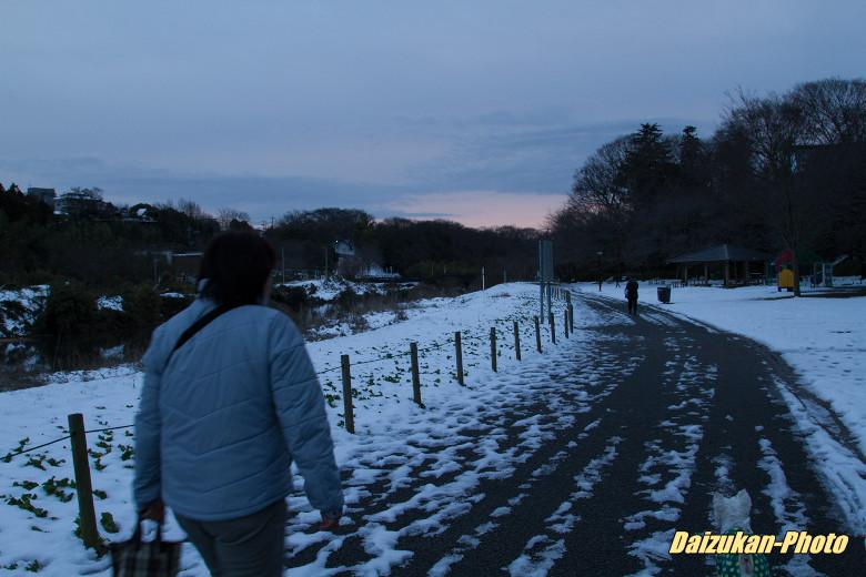daizukan-photo-2737.jpg