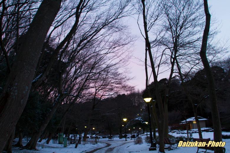 daizukan-photo-2739.jpg