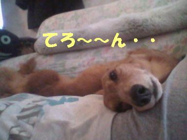 ちるちょい06