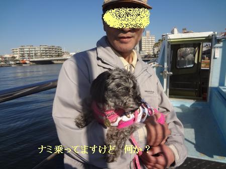 DSC07780_convert_20121125150707.jpg