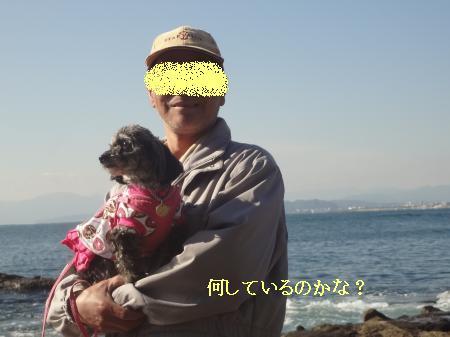DSC07791_convert_20121125151057.jpg