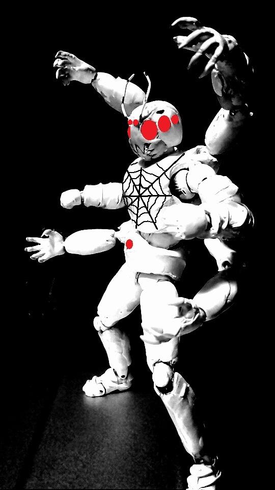 蜘蛛その1 (7)
