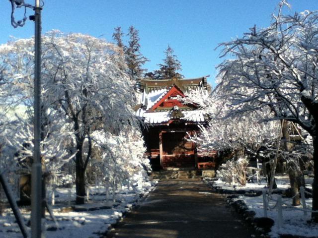 雪の国分寺1
