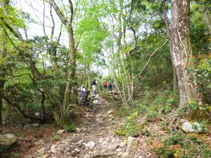 鈴鹿・釈迦ヶ岳へ新緑の山歩き♪
