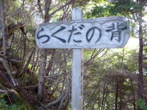 上松Aコースで木曽駒♪
