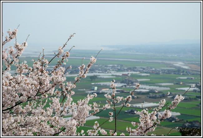 2013年円応寺・鹿島桜の里・祐徳稲荷 (45)