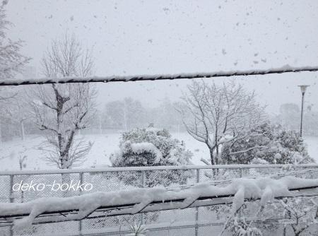 大雪 20141217 公園
