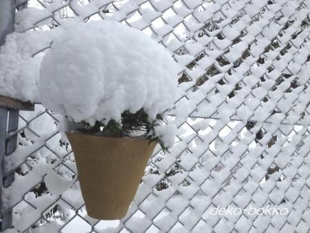 雪がつもる 20141217