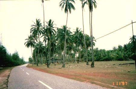 マレーシア東海岸田舎道