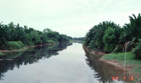 バトゥパハ河