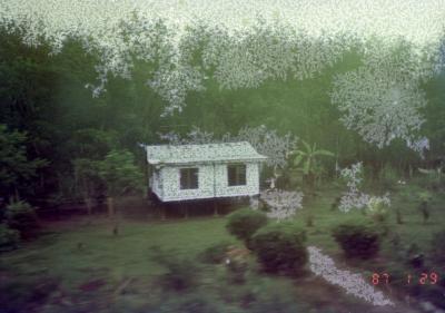 マレー鉄道途中の景色 小さな民家