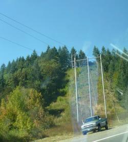 US木製電柱