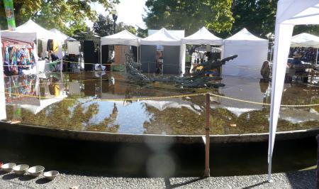US公園池鏡水面