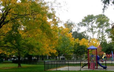 TR Wo宅近くの公園2