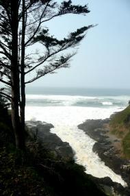 水族館3途中6太平洋の荒波