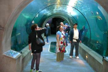 水族館6トンネル