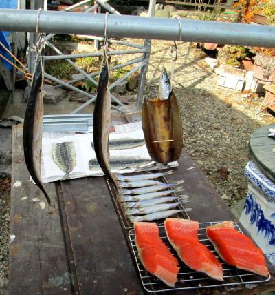 燻製器5日4薫煙前乾燥