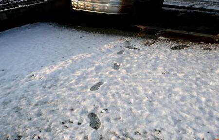 2013年1月15日雪庭