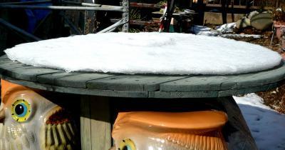 2013年1月16日1雪変な融け方