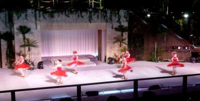 ハワイアン1月25日6ダンス4