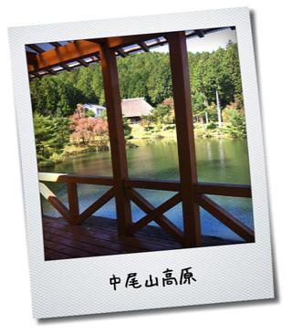 中尾山高原2