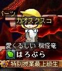 Maple120719_234538.jpg