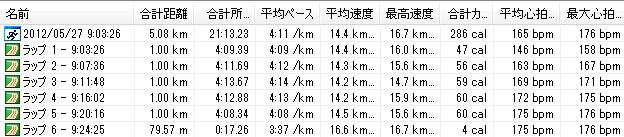 2012y05m27d_月例川崎-5km
