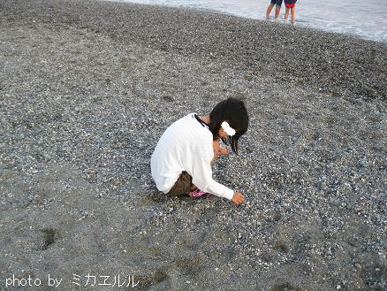 12.10.07桂浜五色石IMG_2685