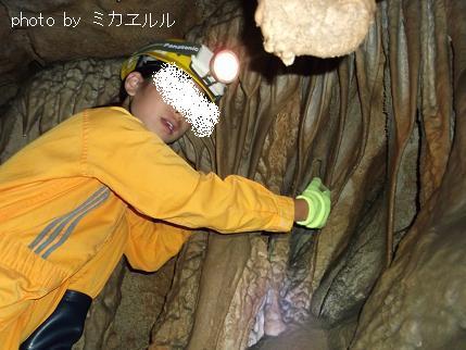 12.10.08龍河洞窟うDSCF0257