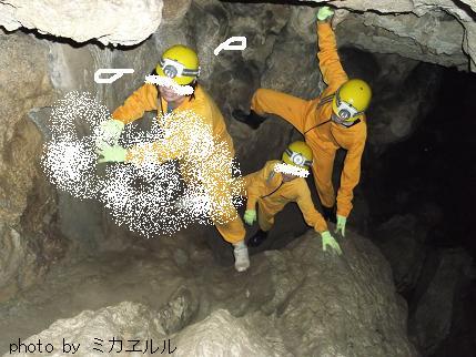 12.10.08龍河洞えDSCF0262