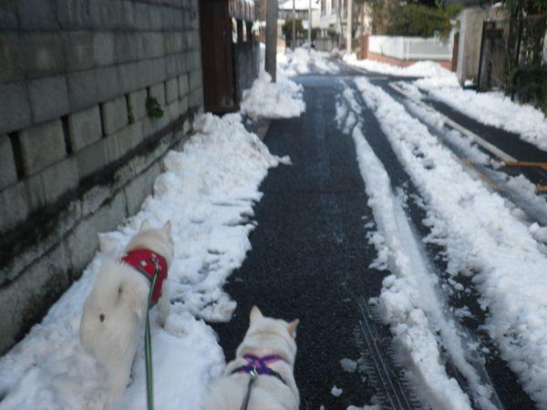 2014.2.9 花鈴&竜牙2