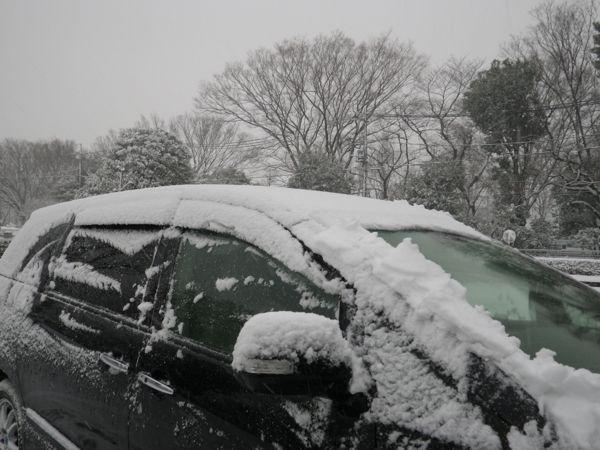 2014.2.14 二回目の大雪10