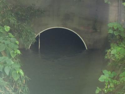 隧道出口高森2