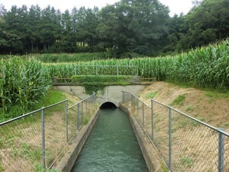 隧道入口(粟窪)