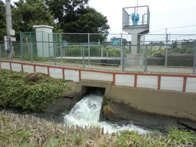 渋田川伏越溢流水