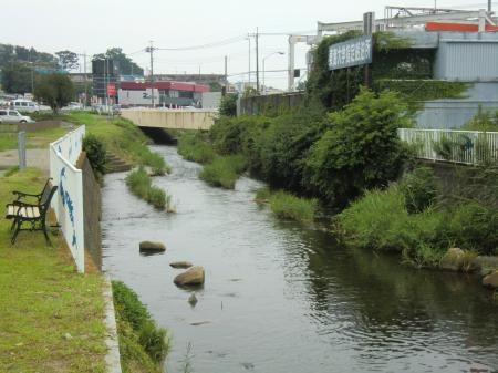 渋田川下流