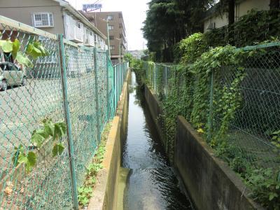 矢羽根排水路