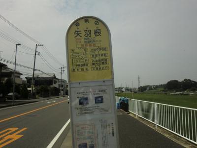 神奈中バス矢羽根バス停