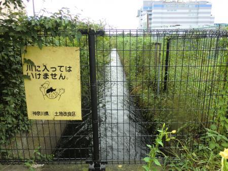 新八木間橋際昭和用水開渠