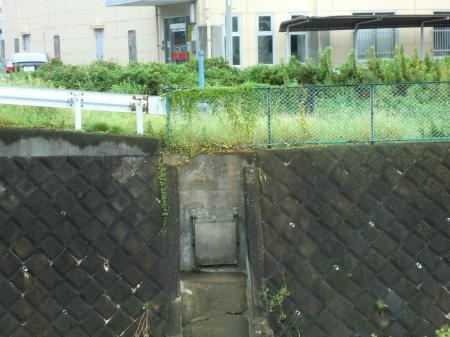 新八木間橋際水門排水口