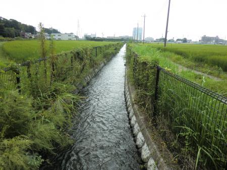 榎戸・支線用水路